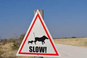 """Road sign with animals that says """"slow!""""."""