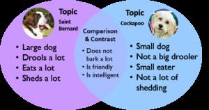 Venn diagram comparing Saint Bernards and Cockapoo dogs.