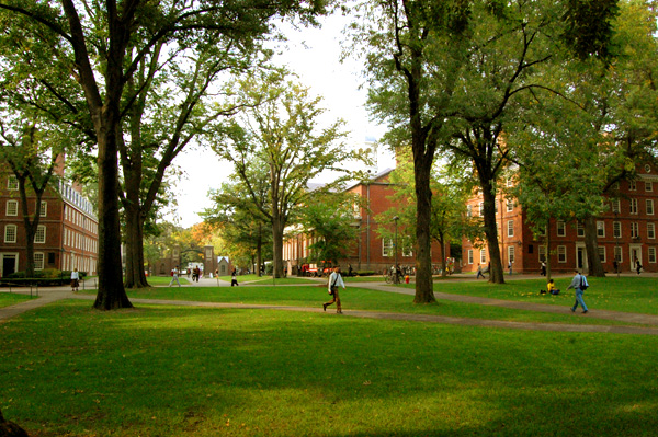 Harvard campus with green lawns, trees, and brick buildings
