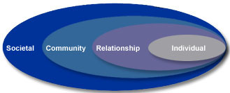 The Social-Ecological Model