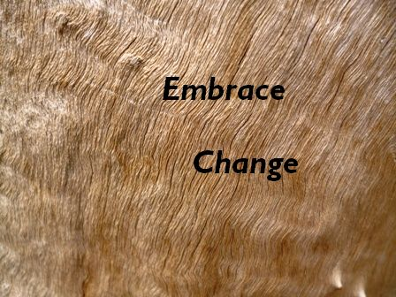 """Embrace Change"" against a textured wood background"