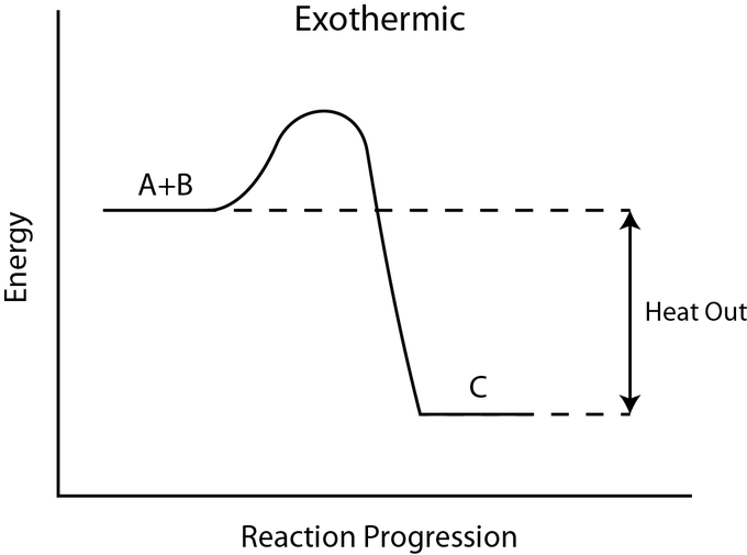Exothermic And Endothermic Processes Introduction To Chemistry