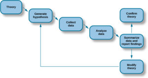 """A diagram has seven labeled boxes with arrows to show the progression in the flow chart. The chart starts at """"Theory"""" and moves to """"Generate hypothesis,"""" """"Collect data,"""" """"Analyze data,"""" and """"Summarize data and report findings."""" There are two arrows coming from """"Summarize data and report findings"""" to show two options. The first arrow points to """"Confirm theory."""" The second arrow points to """"Modify theory,"""" which has an arrow that points back to """"Generate hypothesis."""""""