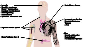 """An illustration of the top half of a human body identifies the locations in the body that correspond with various adverse affects of sleep deprivation. The brain is labeled with """"Irritability,"""" """"Cognitive impairment,"""" """"Memory lapses or loss,"""" """"Impaired moral judgment,"""" """"Severe yawning,"""" """"Hallucinations,"""" and """"Symptoms similar to ADHD."""" The heart is labeled with """"Risk of heart disease."""" The muscles are labeled with """"Increased reaction time,"""" """"Decreased accuracy,"""" """"Tremors,"""" and """"Aches."""" There is an organ near the stomach labeled """"Risk of diabetes Type 2."""" Various parts of the neck, arm, and underarm are labeled """"Impaired immune system."""" Other risks include """"Growth suppression,"""" """"Risk of obesity,"""" """"Decreased temperature."""""""