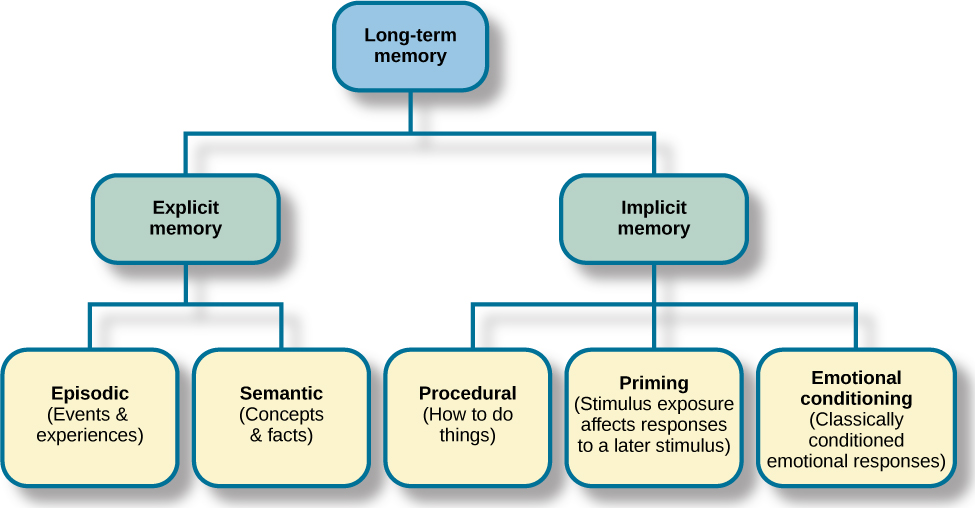 "A diagram consists of three rows of boxes. The box in the top row is labeled ""long-term memory;"" a line from the box separates into two lines leading to two boxes on the second row, labeled ""explicit memory"" and ""implicit memory."" From each of the second row boxes, lines split and lead to additional boxes. From the ""explicit memory"" box are two boxes labeled ""episodic (events and experiences)"" and ""semantic (concepts and facts)."" From the ""implicit memory"" box are three boxes labeled ""procedural (How to do things),"" ""Priming (stimulus exposure affects responses to a later stimulus),"" and ""emotional conditioning (Classically conditioned emotional responses)."""