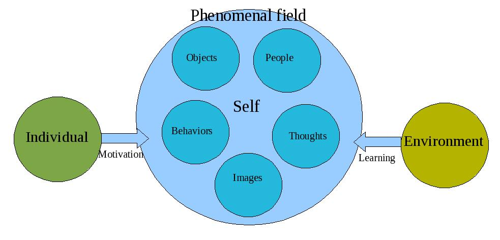 the main characteristics of the humanistic approach to personality development Personality analysis of person of interest through humanistic approach  the main issue is the development  my friend's personality development.