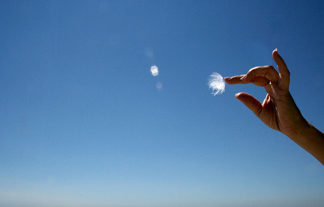 Image of a hand reaching out to touch a floating piece of flower or dust, in front of a blue sky background.