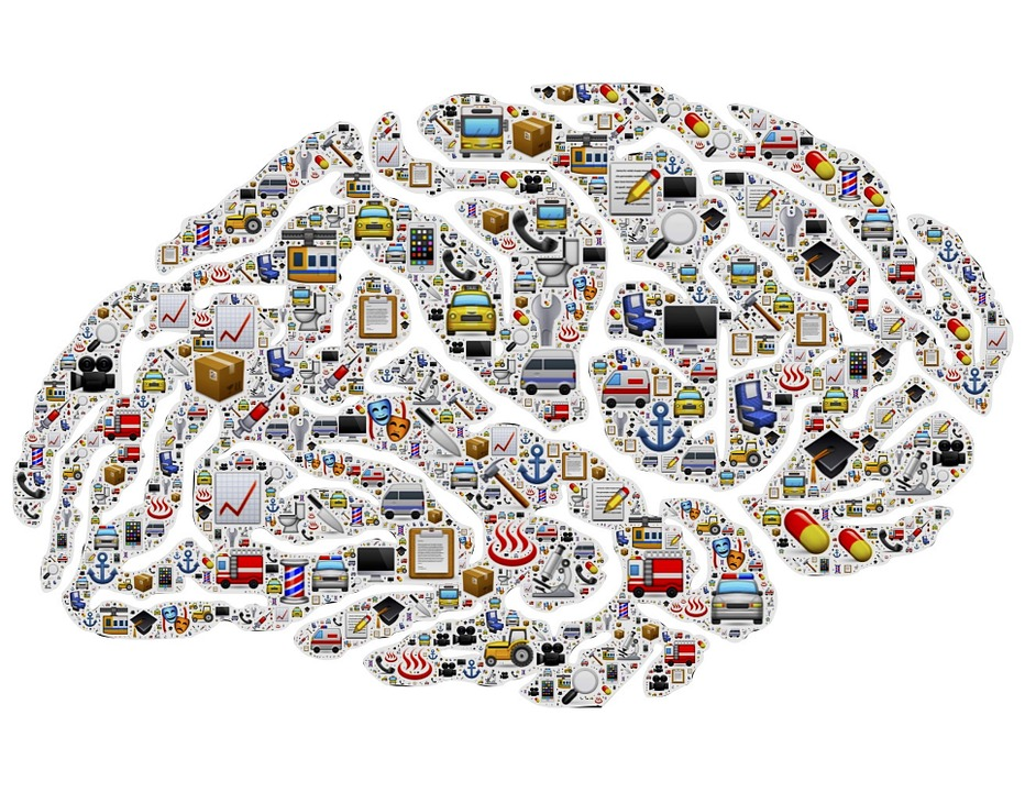 Images of clipart objects of things like cars and buildings inside the shape of a brain.