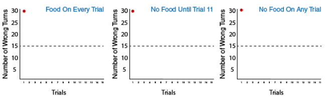 3 graphs depicting the three groups in Tolman's experiment: food on every trial group, the no food until trial 11 group, and the no food on any trial group. Each of the groups took 30 wrong turns on their first trial.