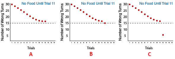 Three graphs depicting the options that the rats in the Group B: No Food until Trial 11 may choose for their 12th trial. Will they continue to make 16 wrong turns (graph A), will they improve and make 15 wrong turns (graph B), or will they improve dramatically and make just 5 wrong turns (graph C)?