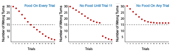 3 graphs depicting the three groups in Tolman's experiment: Group 1: food on every trial, Group 2: no food until trial 11, and Group 3: no food on any trial. Group one shows the number of wrong turns decreasing down to 16 by the sixth trial. Group two gets slightly better, with about 21 wrong turns, and Group 3 makes around 18 wrong turns. Group A and B improve to almost no wrong turns by trial 15, while group 3 continues to make 16 wrong turns.