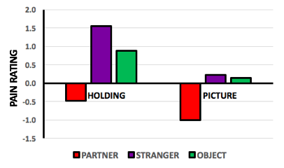 Actual results show that holding hands of a partner reduced pain by .5, but holding hands with a stranger increased it by 1.5 and holding an object increased to almost 1. Looking at a picture of a partner reduced pain by 1, looking at a picture of a stranger increased it by .25 and looking at an object increased pain by .1.
