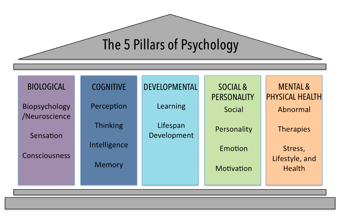 Image of five pillars, showing the biological, cognitive, developmental, social and personality, and mental and physical health