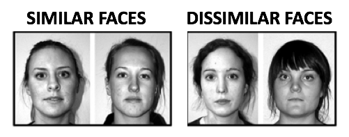 Two sets of images. One shows incredibly similar faces of caucasian women, while the next pair shows dissimilar female faces.