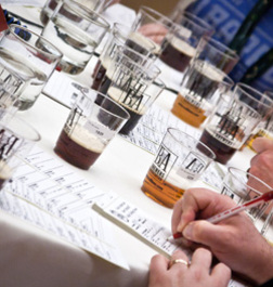 Judging at the Great American Beer Festival