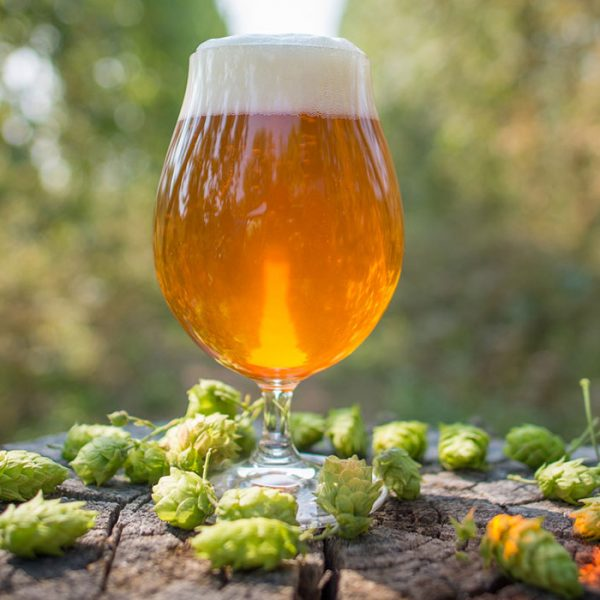 IPA Ingredients