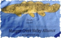 The Morgan Creek Valley Alliance