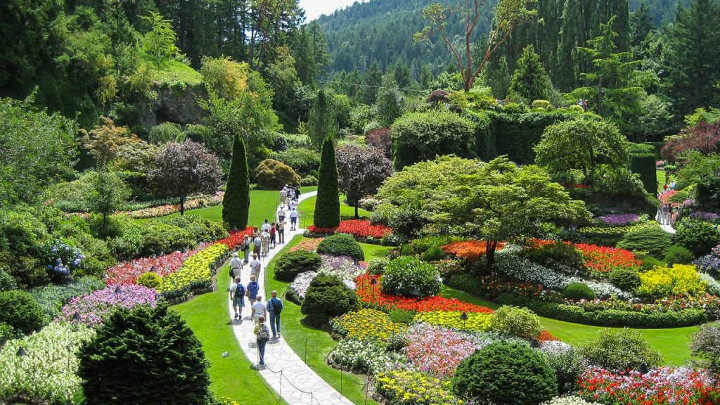 Butchart Gardens, known for Dahlias