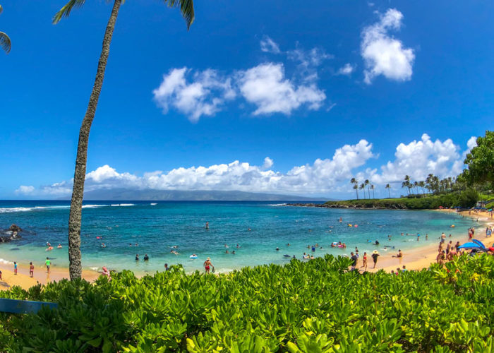 Hawaiian beach scene