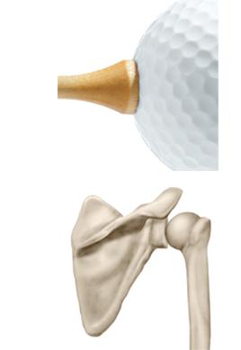 PostShoulder and golf ball2