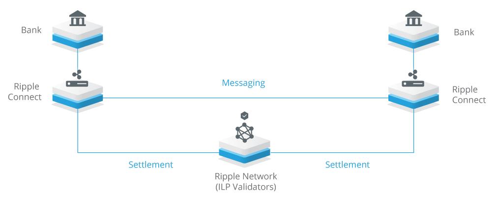 hoe werkt ripple
