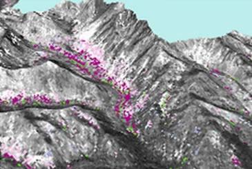 Mountain Soils GIS image