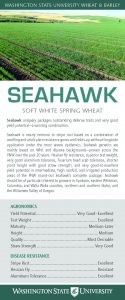 Seahawk, soft white spring wheat, flyer