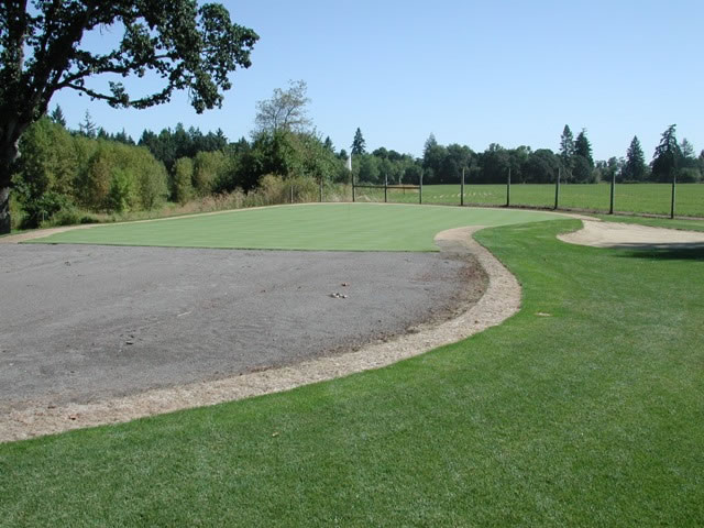 Turf at a golf course