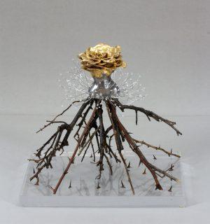 Estella Fransbergen - estella fransbergen