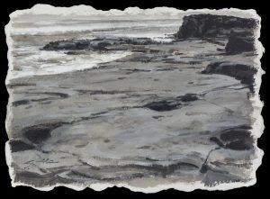 Matthew Cutter - Coquina Rocks