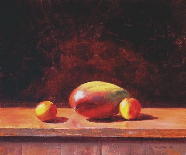 Mango & Nectarines