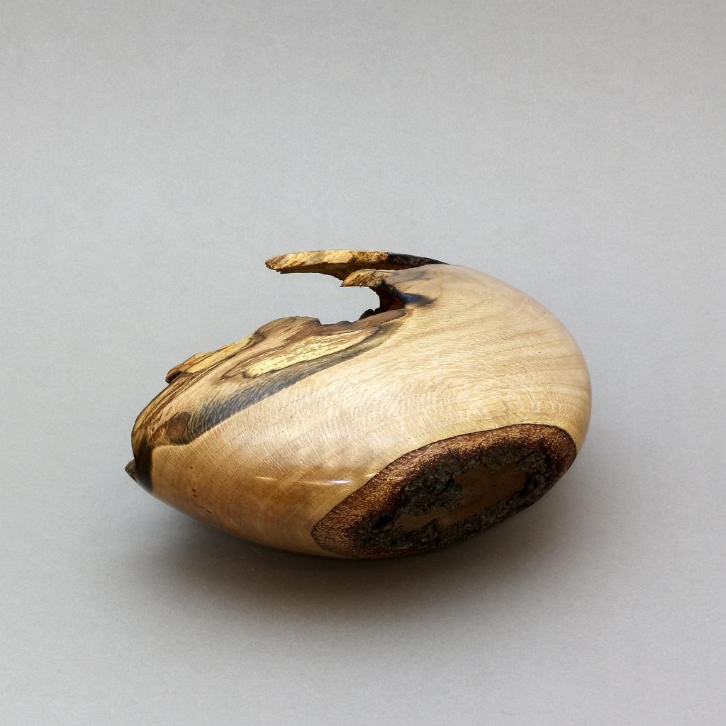 Medium Oak Hollow Form