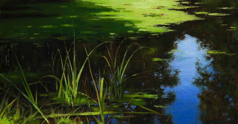 Pond Grasses in Light
