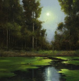 Matthew Cutter - Reflections of a Summer Night