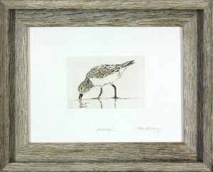 Cathey December - Sanderling I