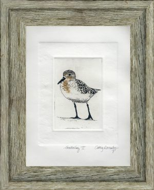 Cathey December - Sanderling II