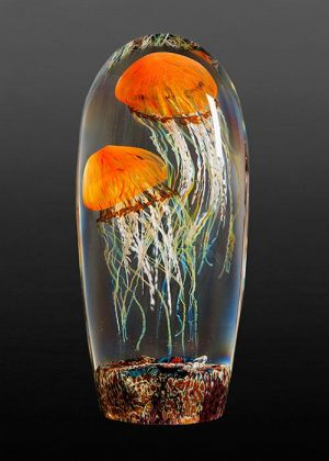 Richard Satava - Double Pacific Coast Jellyfish