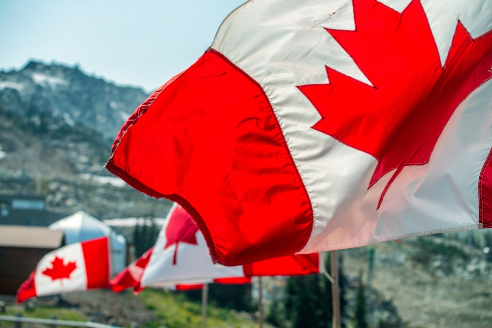 Canada flags in the wind