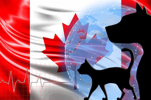 Earn Up to $126, 300 When You Immigrate to Canada As a Vet
