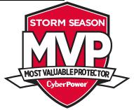 MVP storm season logo