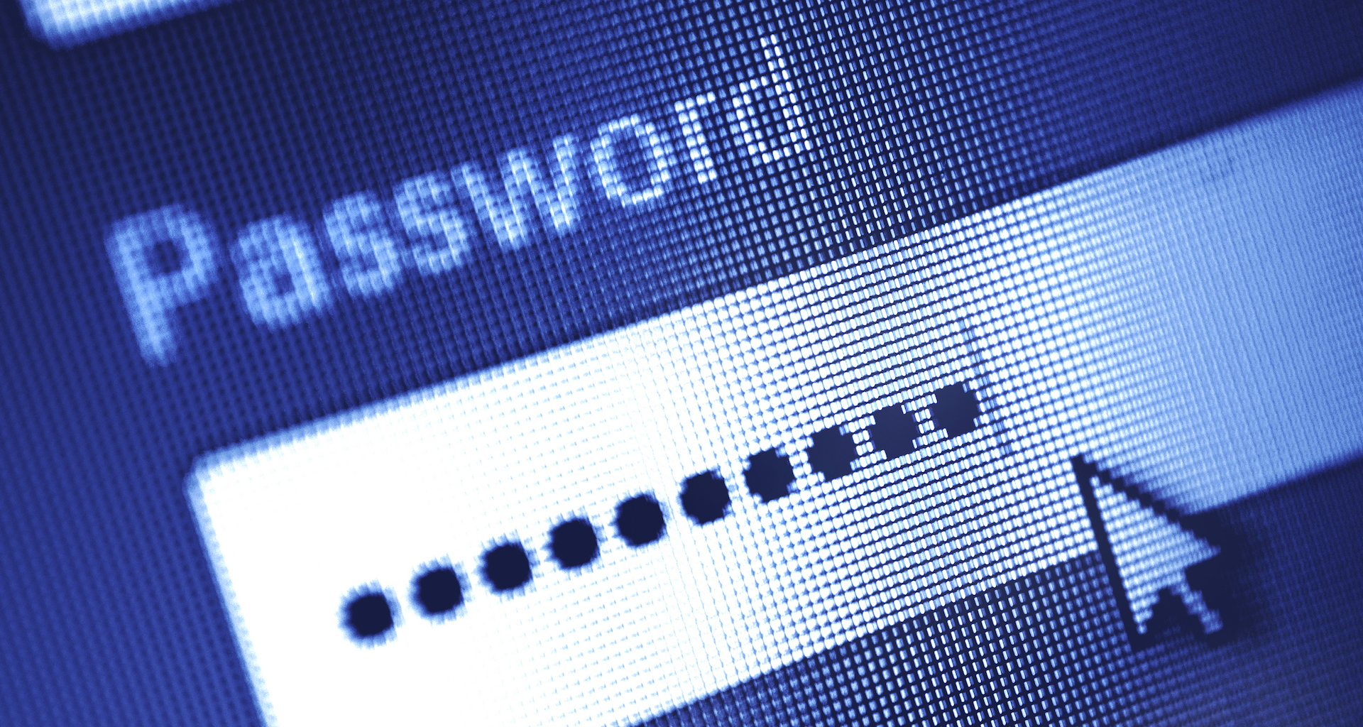 A phishing campaign's collateral damage: Stolen passwords were publicly searchable - CyberScoop
