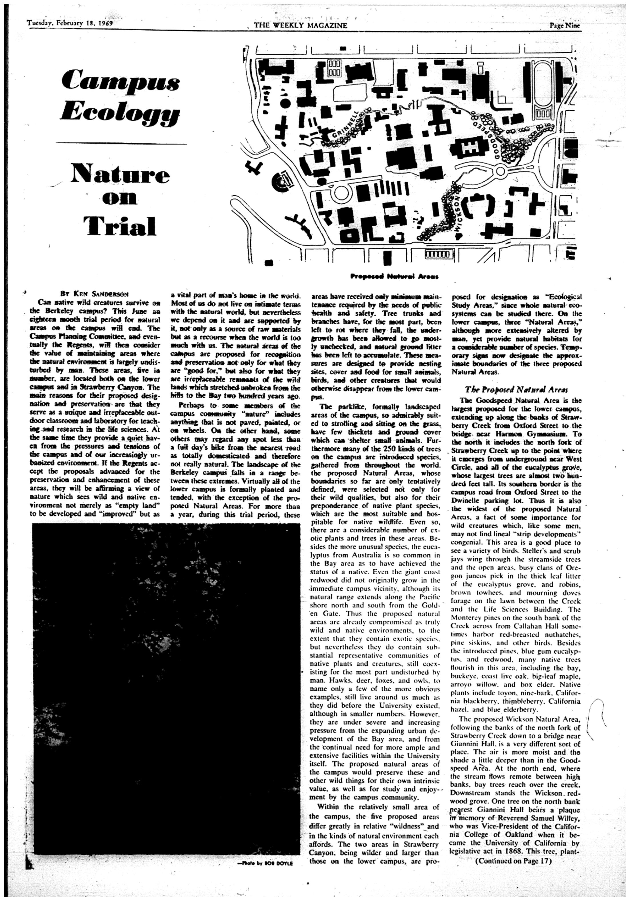 Feb  18, 1969   The Daily Californian Archive