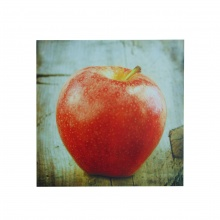 APPLE Printed Canvas
