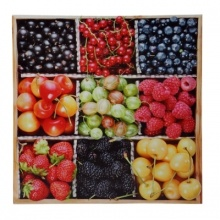 NINE FRUITS Printed Canvas