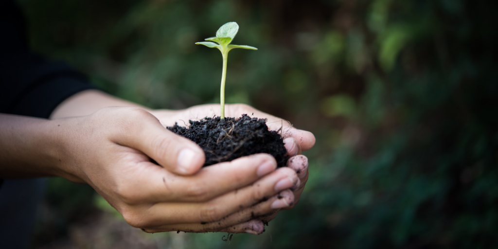 Lead Nurturing: Why it's Important and How To Do It