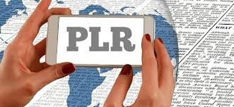 Best Ideas For Using PLR