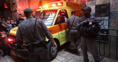 מתגברים פיגועי הדקירה והדריסה. עדיאל קולמן נרצח בירושלים. התוכנית הפלסטינית להלהיט את השטח מעכשיו ועד ה-15 במאי