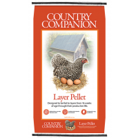 Nutrena Counrty Companion Layer 16% Pelleted Feed 50lb
