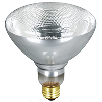 65w In/out Wp Reflector Bulb 2