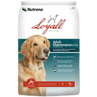 Loyall Adult Maintenance 40lb